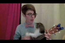 ギターの演奏を撮影してたら飼い猫がひょっこり登場 一つのギターを一人と一匹で演奏!?