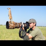 動物と人間の友情 カメラマンとミーアキャットがたわむれる姿がめっちゃかわいい!