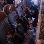 """アラブの富豪が""""鷹""""のために飛行機の座席を12人分購入して座らせる"""