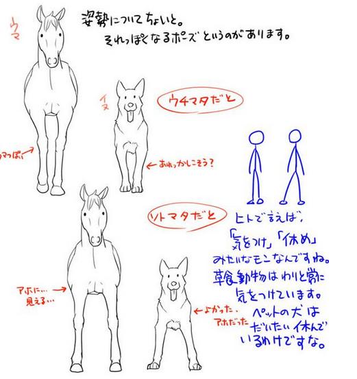 動物イラストの描き方講座の決定版 似ている動物の描き方講座 お絵かき講座パルミー