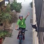 自転車に乗る少年にハイタッチするネコ
