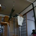 ニャー助、飛ぶ 2メートルの垂直跳びをスローモーションで再生