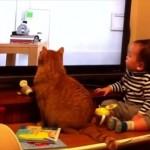 【タイミングがピッタリ】ピタゴラスイッチを見ているネコと赤ちゃんの動きが絶妙過ぎる