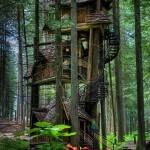 あこがれの秘密基地を実現 樹木の上に立てられた高クオリティなツリーハウス