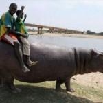 【画像39枚】アフリカで撮影されたおもしろ写真集