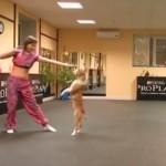 息がピッタリ 飼い主とともに華麗にダンスする犬