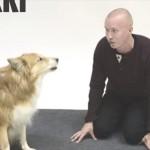 ソックリすぎてワンちゃんも驚き? イヌの鳴きマネをイヌに聞かせてみた