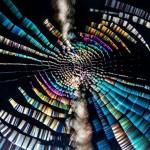自然が生み出した芸術作品 濡れたクモの巣が美しい
