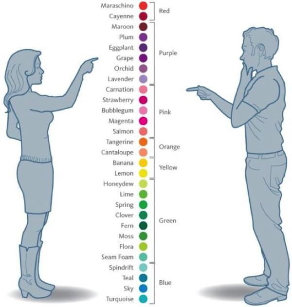 Icolors copy