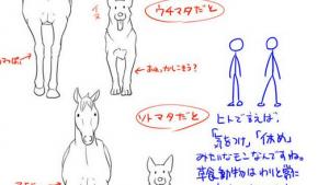 これはすげえ参考になる 動物の上手な書き方いろいろ